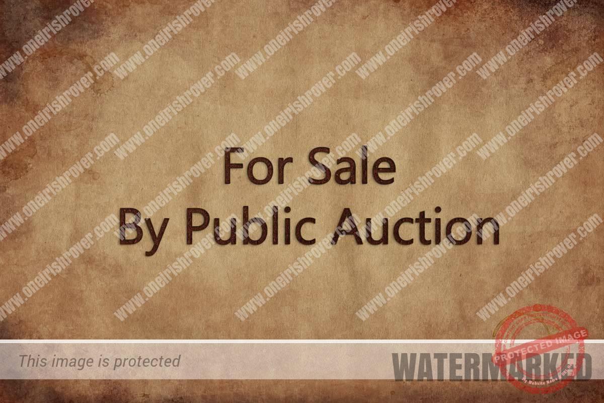 public auction mulholland workman