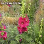 poetry kilrea lady