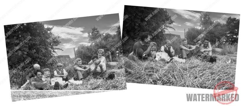 1962 Ireland farmers making hay having tea break