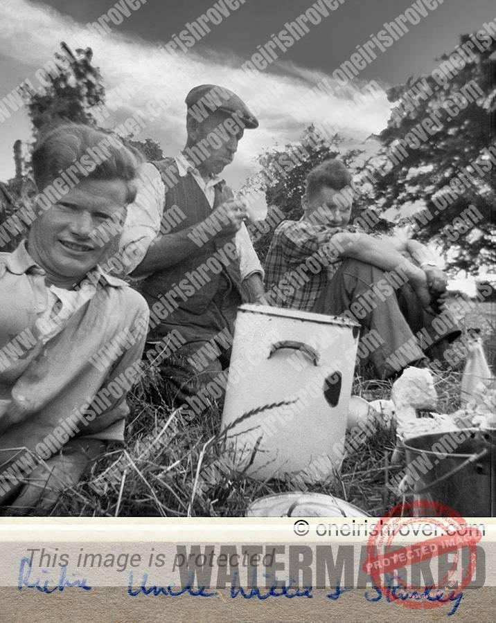Mulhollands teabreak in hayfield, summer 1962