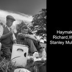 Irish haymaking 1962